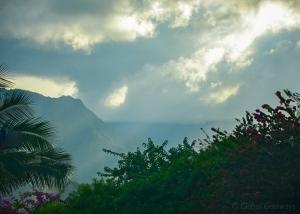 Kauai Rain