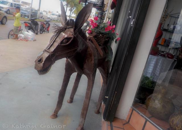 2014 RTW Mexico Katie Cozumel Donkey WM