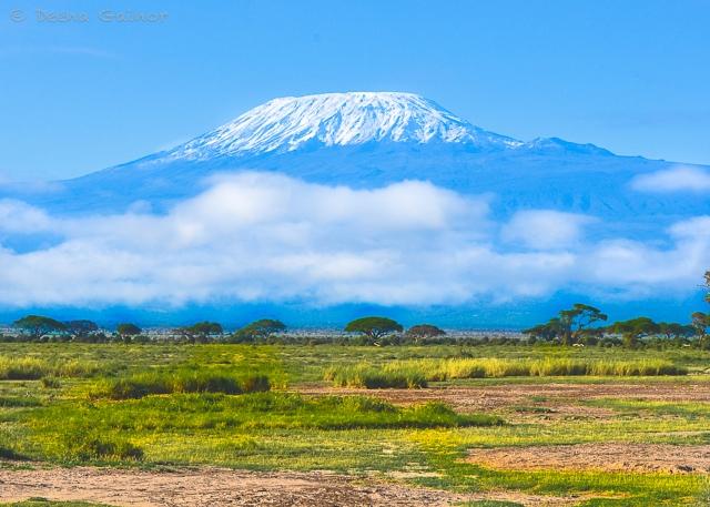 GG Africa TZ Kilimanjaro 2013