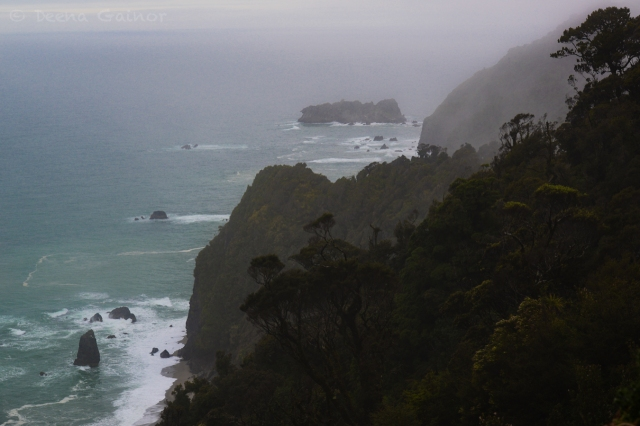 RTW NZ West Coast 2 wm
