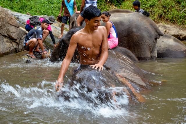 Ryan bathing his Elephant