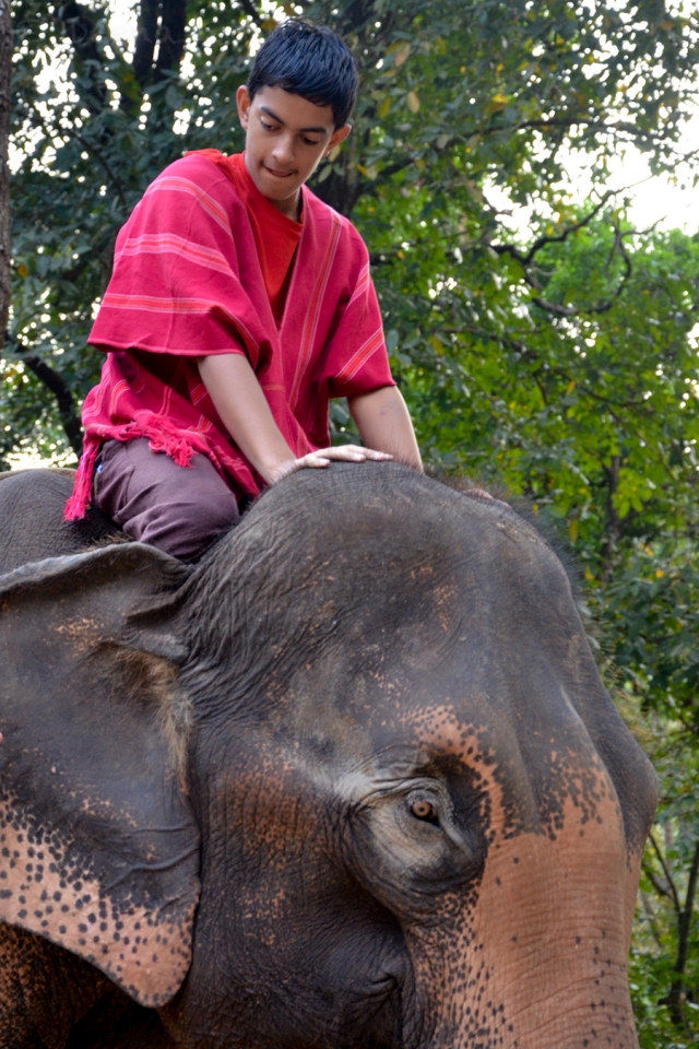 Ryan riding his elephant - Photo by Deena