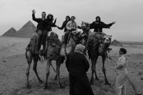 Camel Rides at the Pyramids