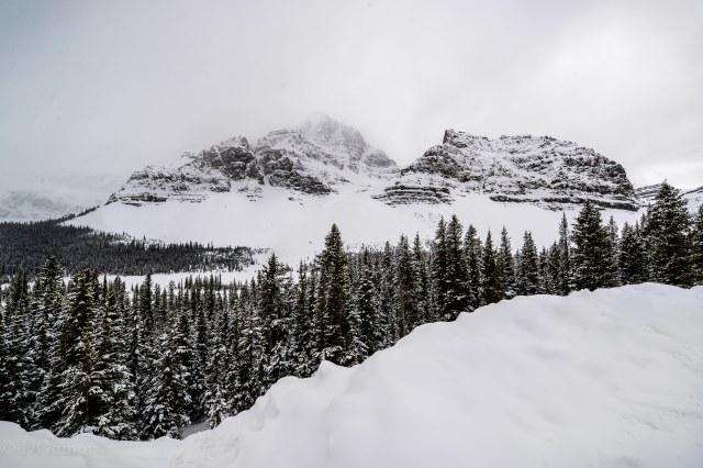 2019 Canada Icefields 7 WM