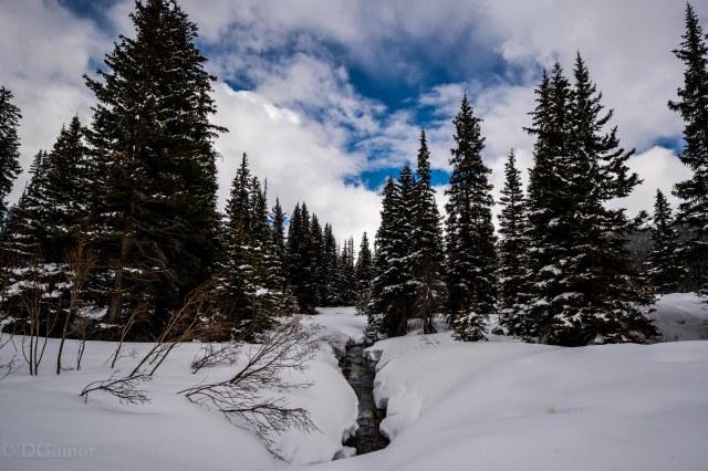 2019 Canada Icefields Parkway Stream 4 WM